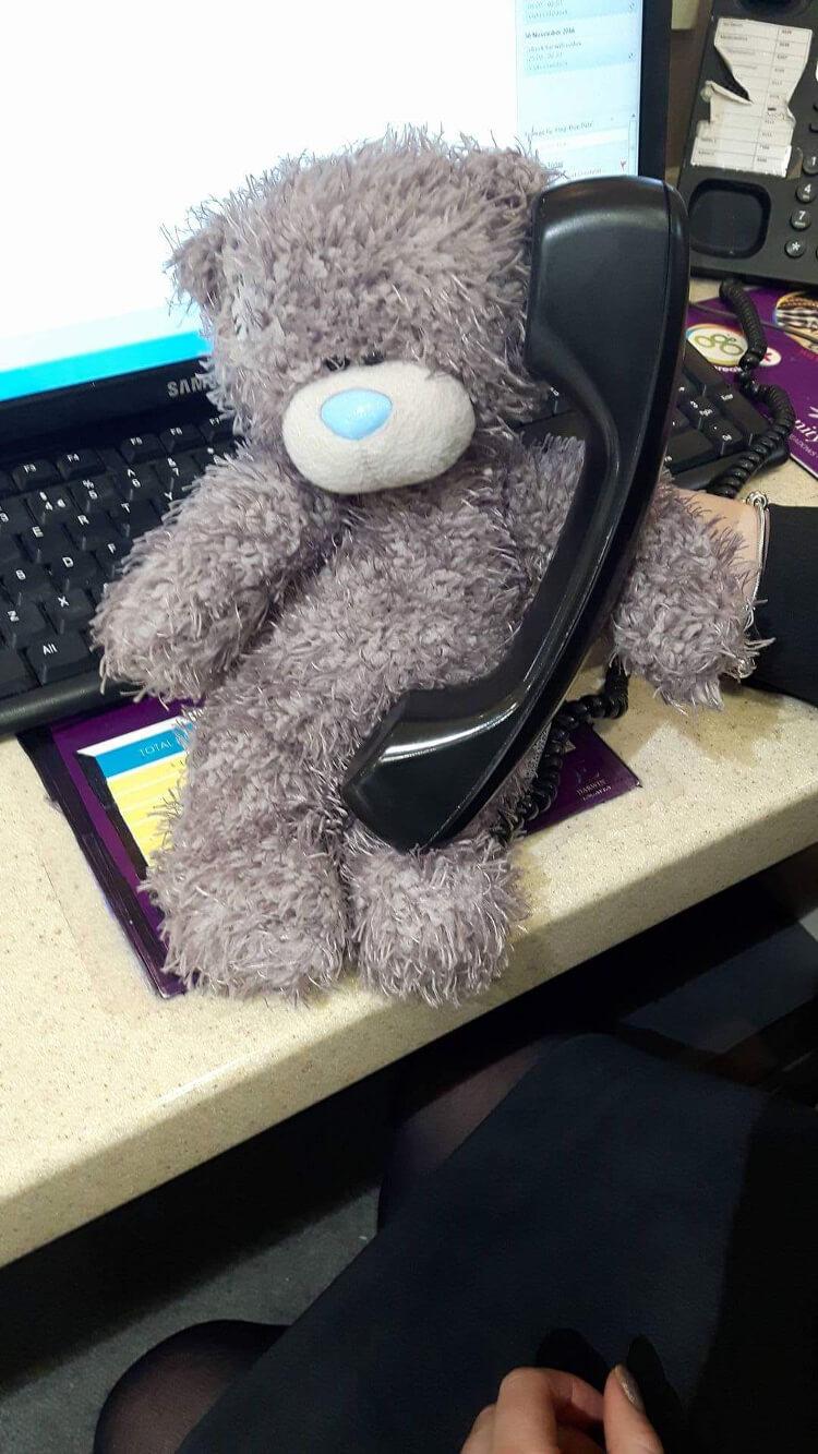 Teddy on the phone