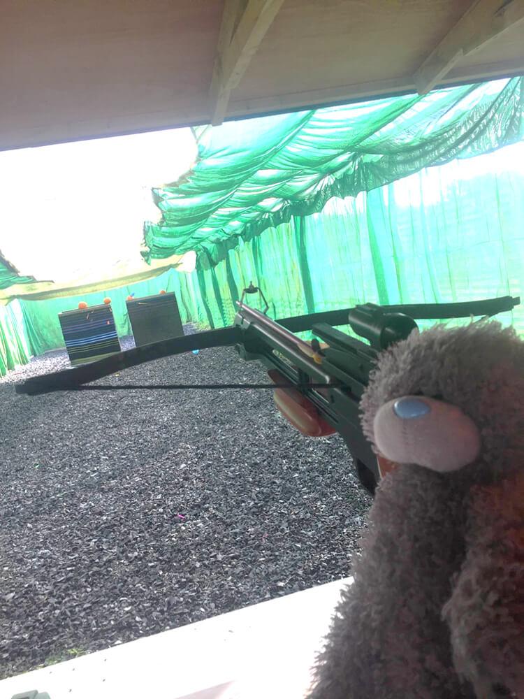 Teddying shooting a crossbow arrow