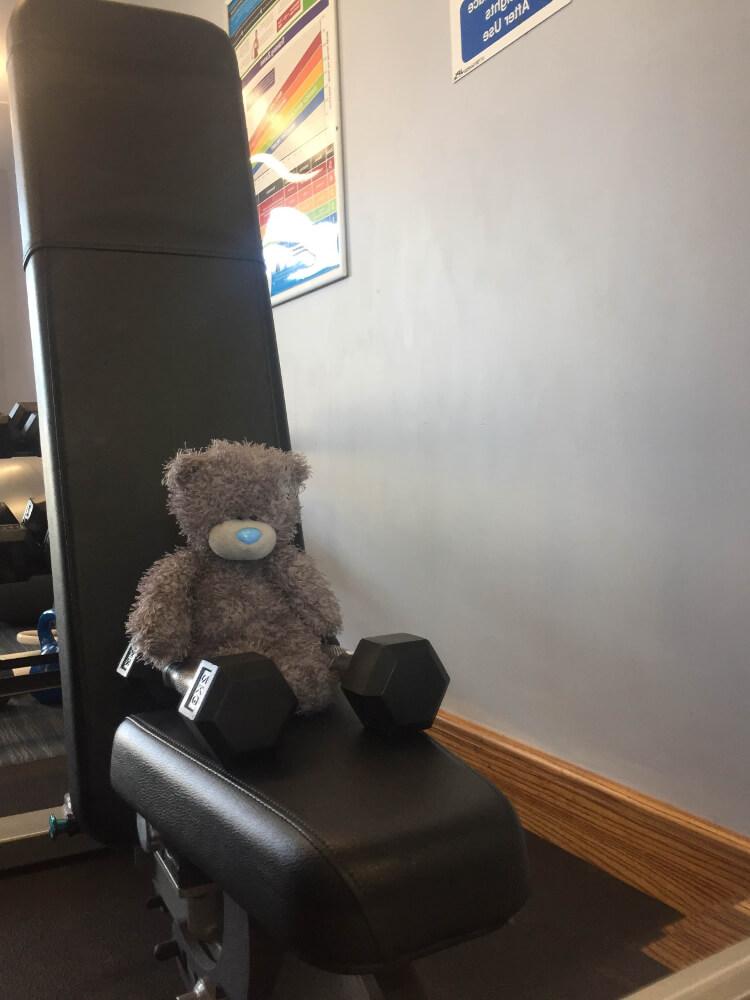 Teddy at Piran Meadows gym