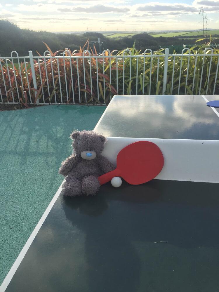 Teddy playing ping pong at Piran Meadows