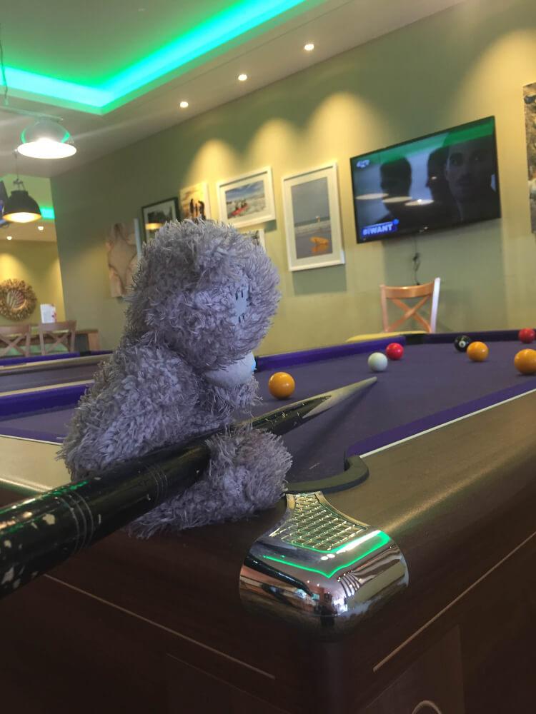 Teddy playing pool at Piran Meadows