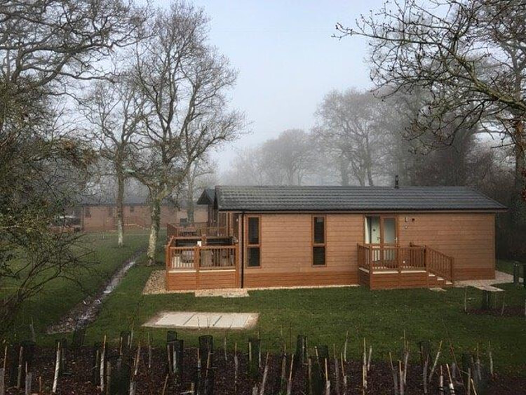 Photos of lodges surrounded by trees at Wareham Forest Lodge Retreat