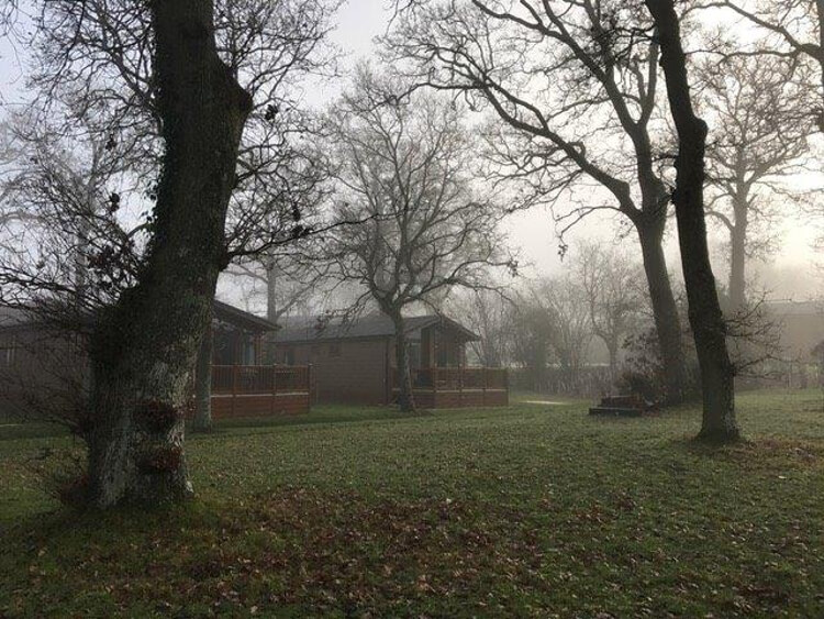 Photo of the lodges at Wareham Forest on a misty day
