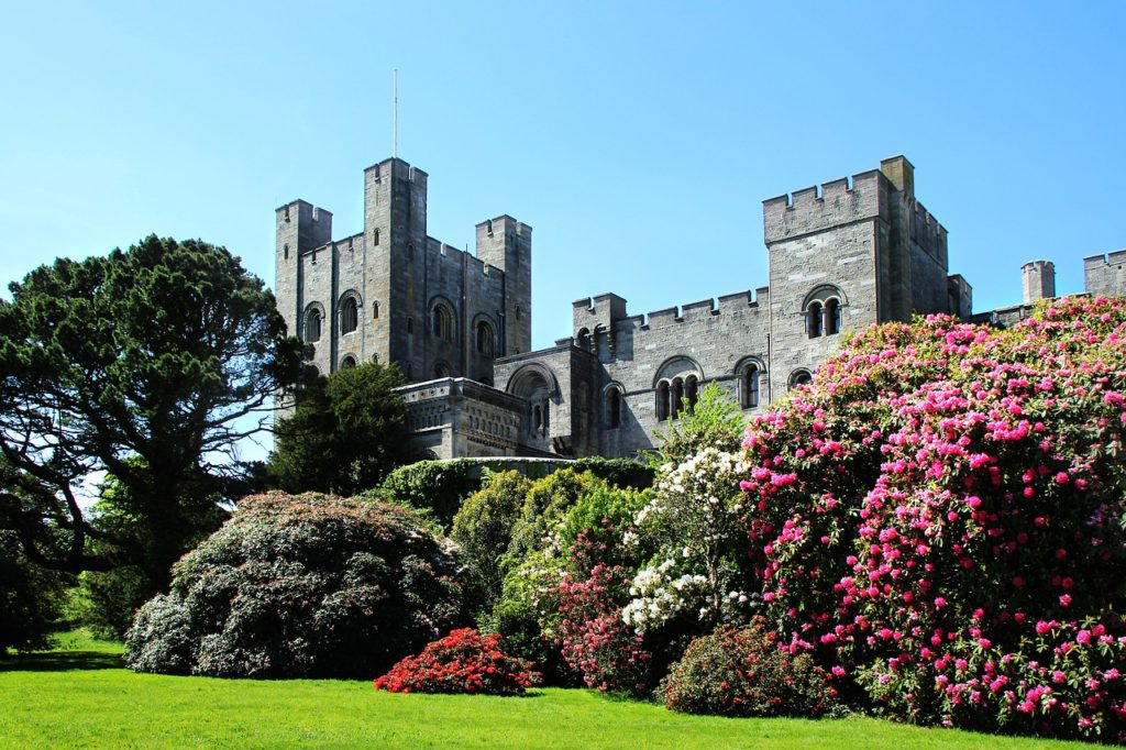 Exterior shot of Penrhyn castle surrounded by trees and bushes