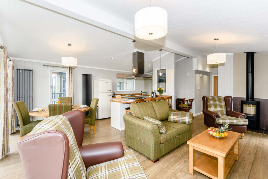 open plan lounge and kitchen area with sofas