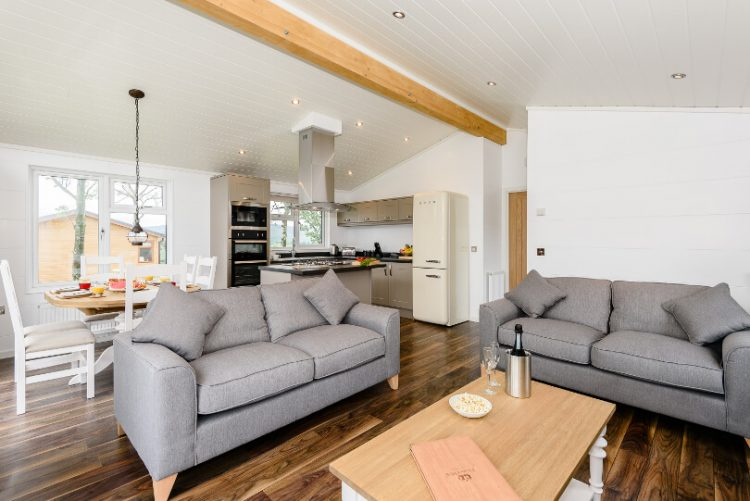 two sofas in living room