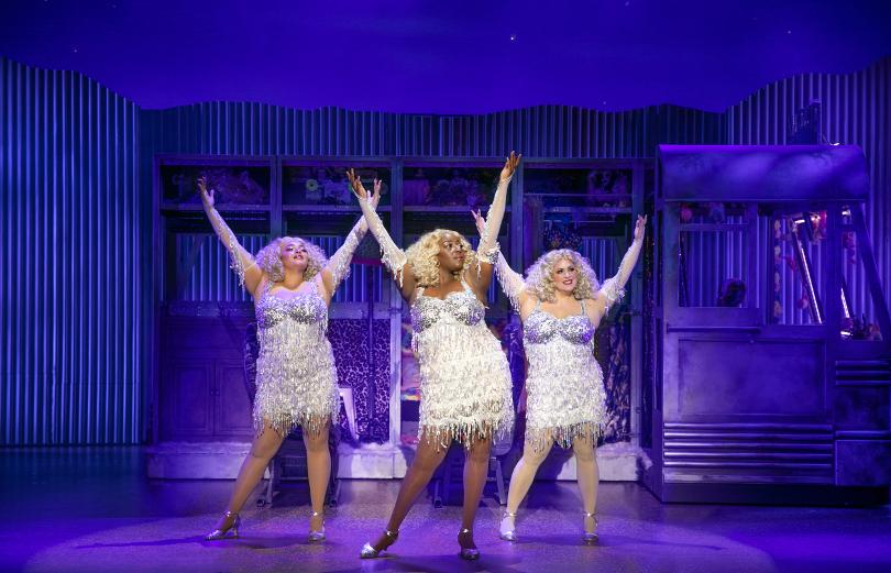 Photo of divas singing Priscilla Queen of the Desert
