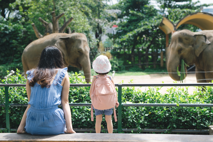 Mother and daughter look at Elephant in a zoo