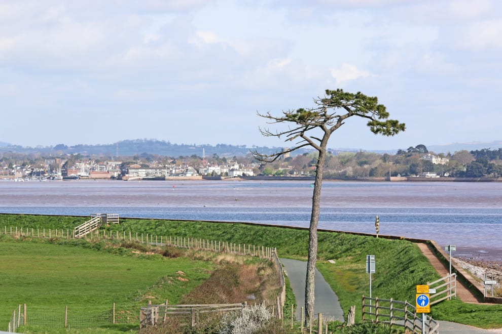 overlooking the river exe and the esturary